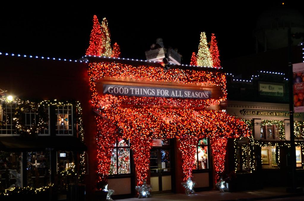 Grapevine Christmas Lights