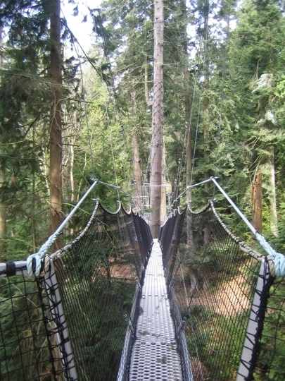 Nearby Hotel Deals & UBC Botanical Garden - Greenheart Canopy Walkway in Vancouver BC ...