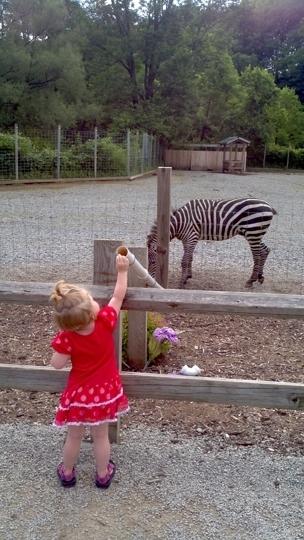 Living Treasures Animal Park Jones Mills Pennsylvania