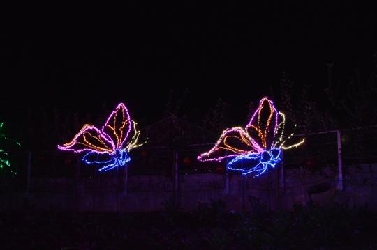 garden lights holiday nights at atlanta botanical garden atlanta georgia - Atlanta Botanical Garden Lights