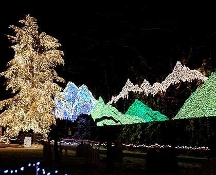 Lights Of Christmas Stanwood