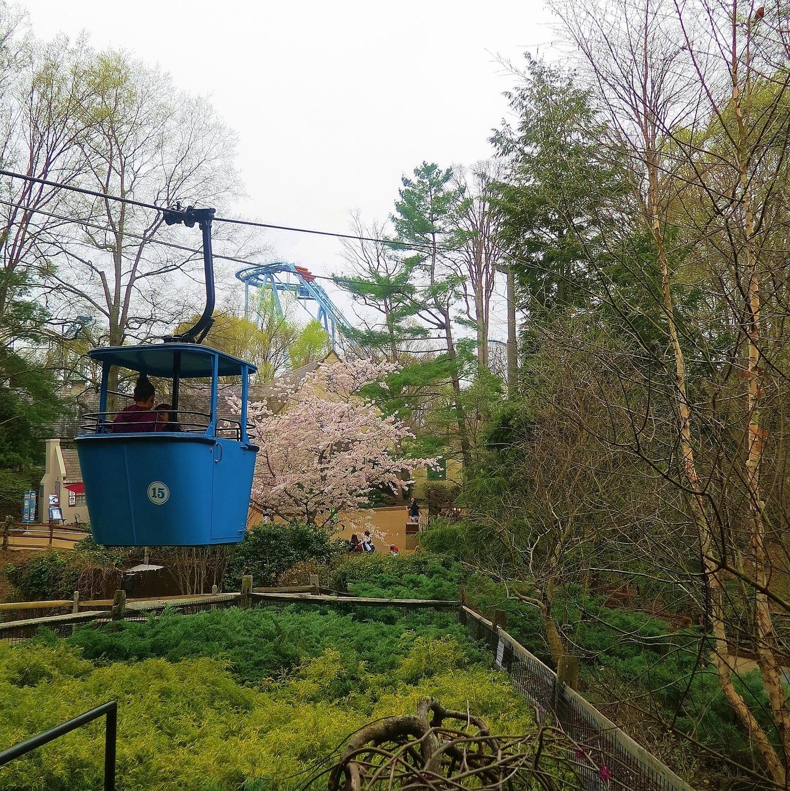 Busch Gardens Williamsburg in Williamsburg VA Parent Reviews