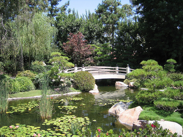 Earl Burns Miller Japanese Garden at CSULB in Long Beach, CA ...