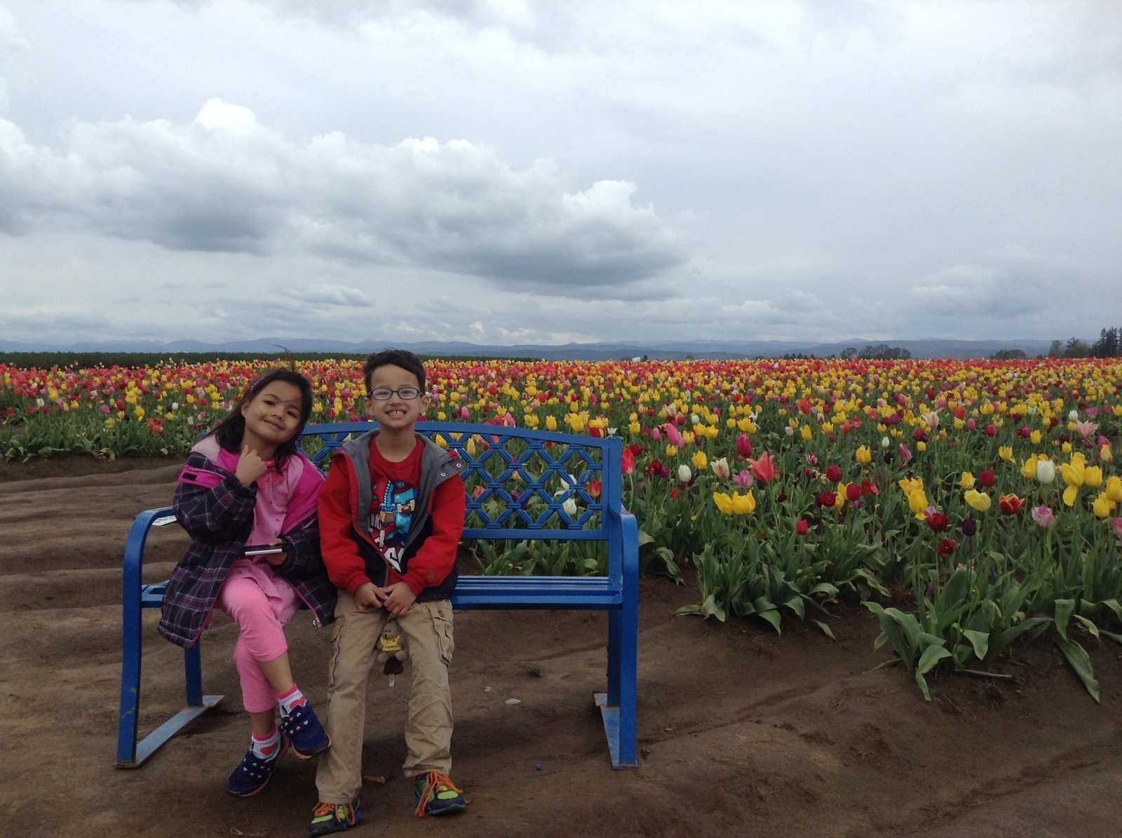 Wooden Shoe Tulip Farm In Woodburn Or Kid Friendly Attractions