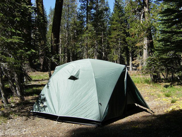 Holcomb Valley Campground in Big Bear Lake, CA - Kid