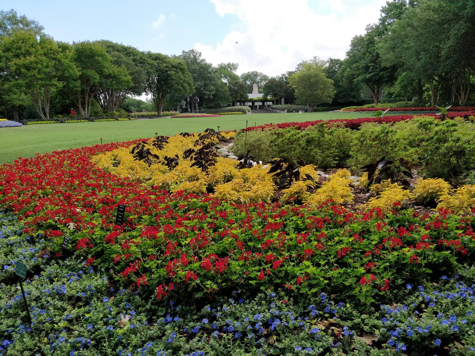 Dallas Arboretum and Botanical Gardens in Dallas, TX - Parent ...