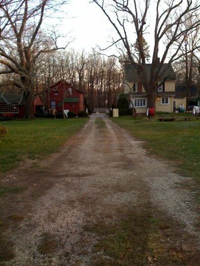 Millers Christmas Tree Farm.Carter Christmas Tree Farm In Miller Place New York Kid