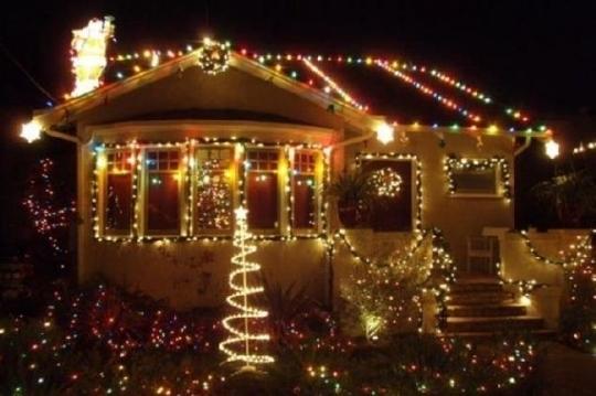 Christmas Tree Lane - Alameda, California - Christmas Tree Lane In Alameda, CA - Parent Reviews & Photos Trekaroo
