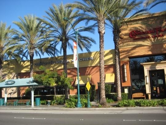 California Pizza Kitchen Palm Tree california pizza kitchen in anaheim, ca - parent reviews & photos