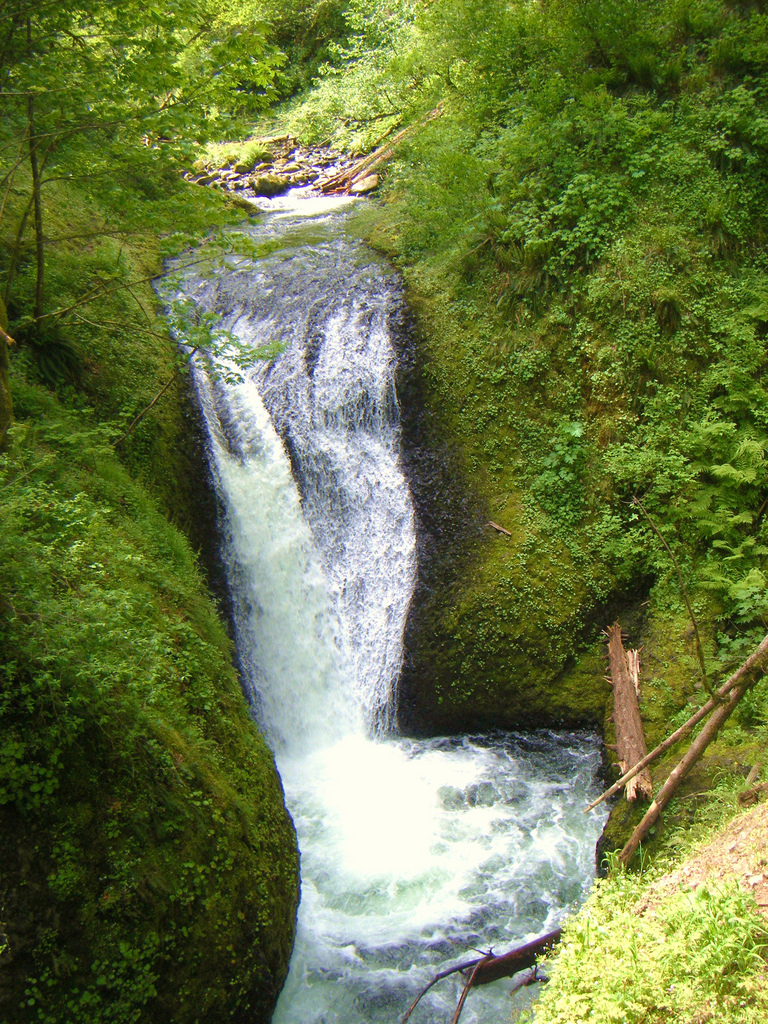 Oneonta Falls In Hood River, Oregon