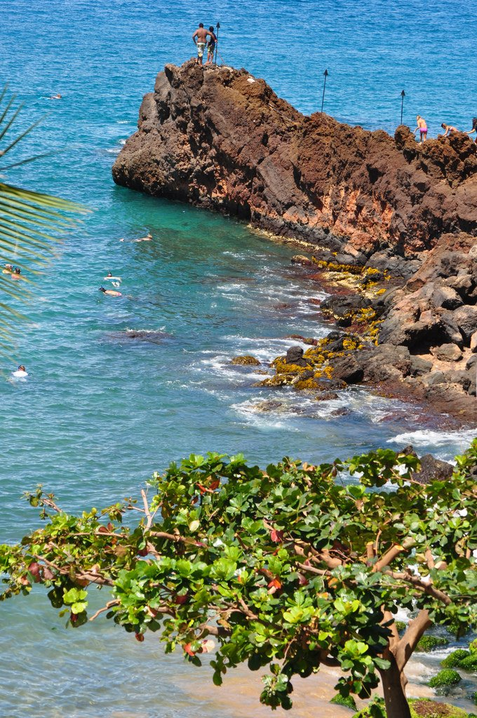 Best Beaches On Maui For Kids To Snorkel