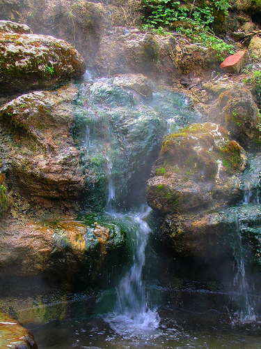 Gorges State Park - Sapphire, North Carolina