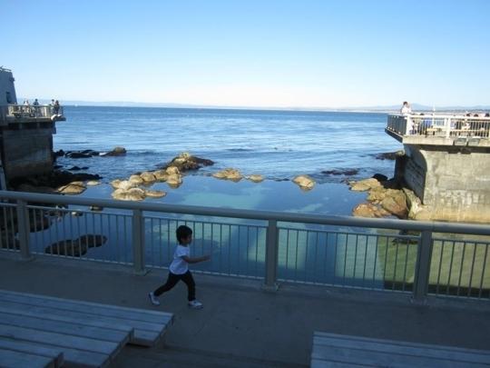 Monterey Aquarium Hours Of Operation