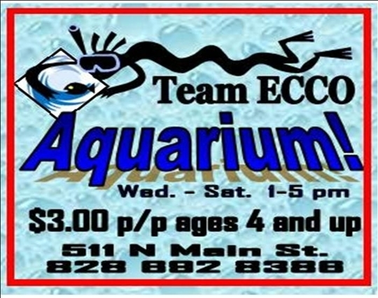 Team Ecco Center For Ocean Awareness Hendersonville Nc