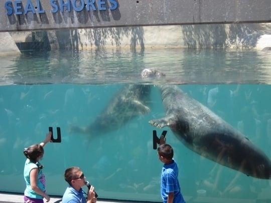 National Aquarium.
