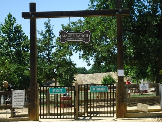 Hap Magee Ranch Park Danville Ca Kid Friendly