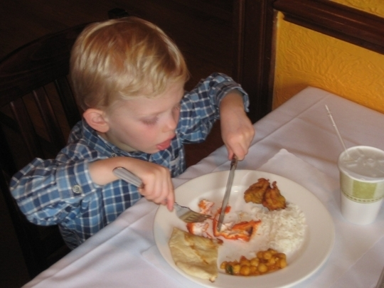Milan indian cuisine charlottesville va kid friendly for Milan indian restaurant