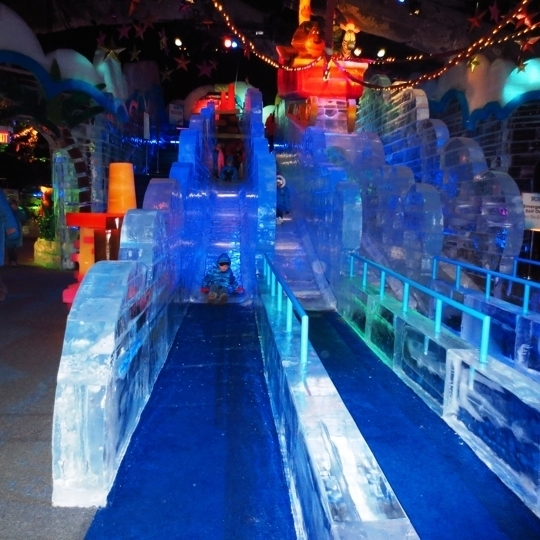 Ice At Gaylord Palms In Kissimmee Fl Parent Reviews