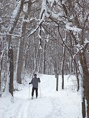 Glacial Park Conservation Area - Ringwood, Illinois