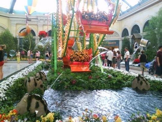 Bellagio Conservatory Botanical Gardens Las Vegas Nv
