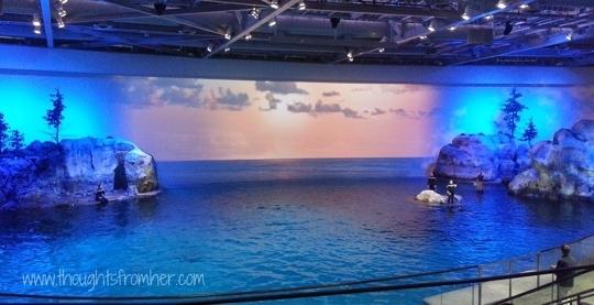 Shedd Aquarium Chicago Il Kid Friendly Activity