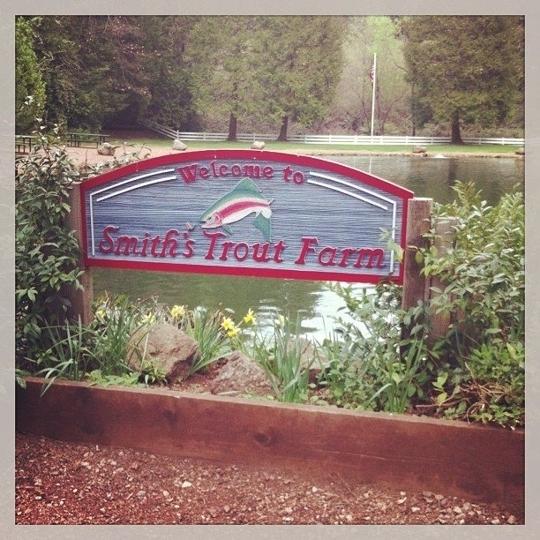 Smith S Mountain St Helena Trout Farm In Calistoga California Kid Friendly Attractions Trekaroo