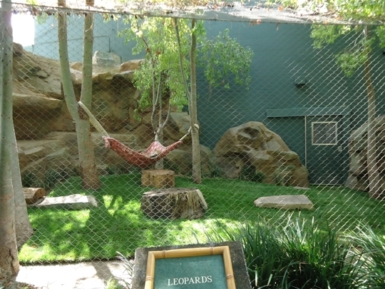 Siegfried Roy 39 S Secret Garden And Dolphin Habitat Las Vegas N Trekaroo