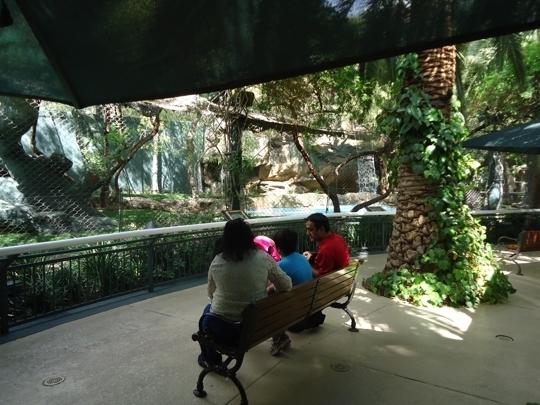 Siegfried Roy 39 S Secret Garden And Dolphin Habitat Las Vegas N Trekaroo
