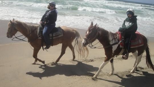 Monterey Bay Equestrian Center Salinas Ca Kid