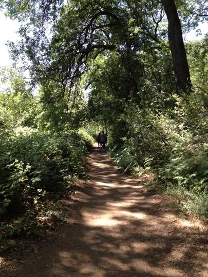 Wildlands Conservancy Oak Glen Preserve Yucaipa Ca