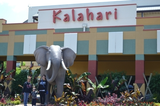 Kalahari Resort Waterparks Wisconsin Dells Wi Kid