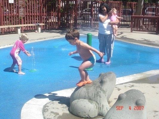 Mitchell Park Palo Alto Ca Kid Friendly Activity Reviews Trekaroo