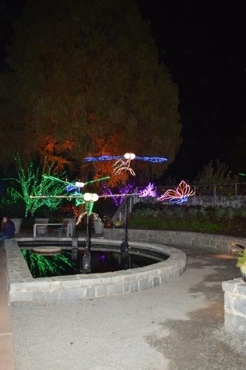 Garden Lights Holiday Nights At Atlanta Botanical Garden Atlanta Trekaroo