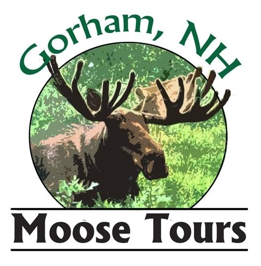 Gorham Moose Tours In Gorham Nh Kid Friendly Activities