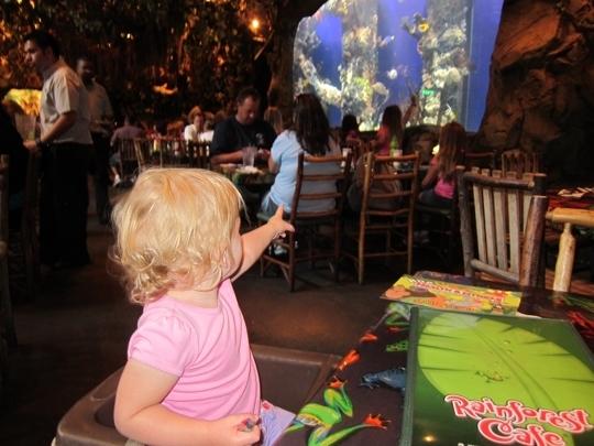 Rainforest Cafe Sacramento California