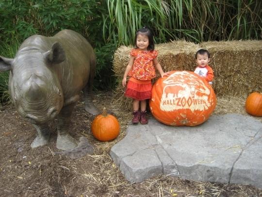 Cincinnati Zoo Amp Botanical Garden Cincinnati Oh Kid