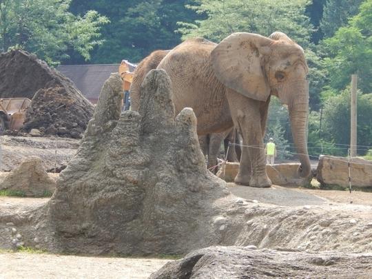 Philadelphia zoo learn