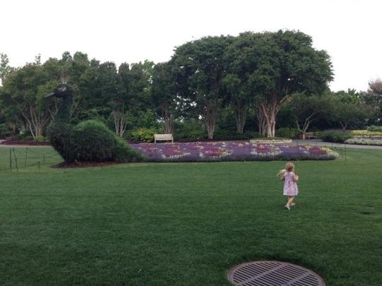 Dallas Arboretum And Botanical Gardens Dallas Tx Kid Friendly Trekaroo
