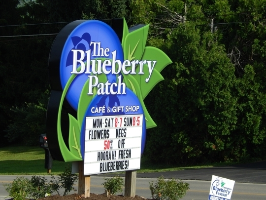 The Blueberry Patch - Mansfield, Ohio