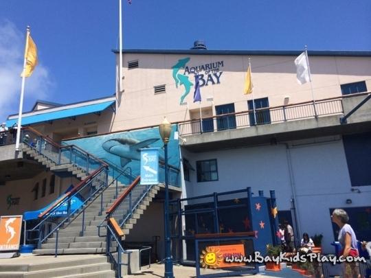 Aquarium Of The Bay San Francisco San Francisco Ca