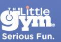 The Little Gym of Wilmington | travel activity for kids - 0.0 star rating