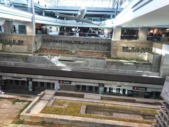 Reviews Of Boston Airport Car Rentals