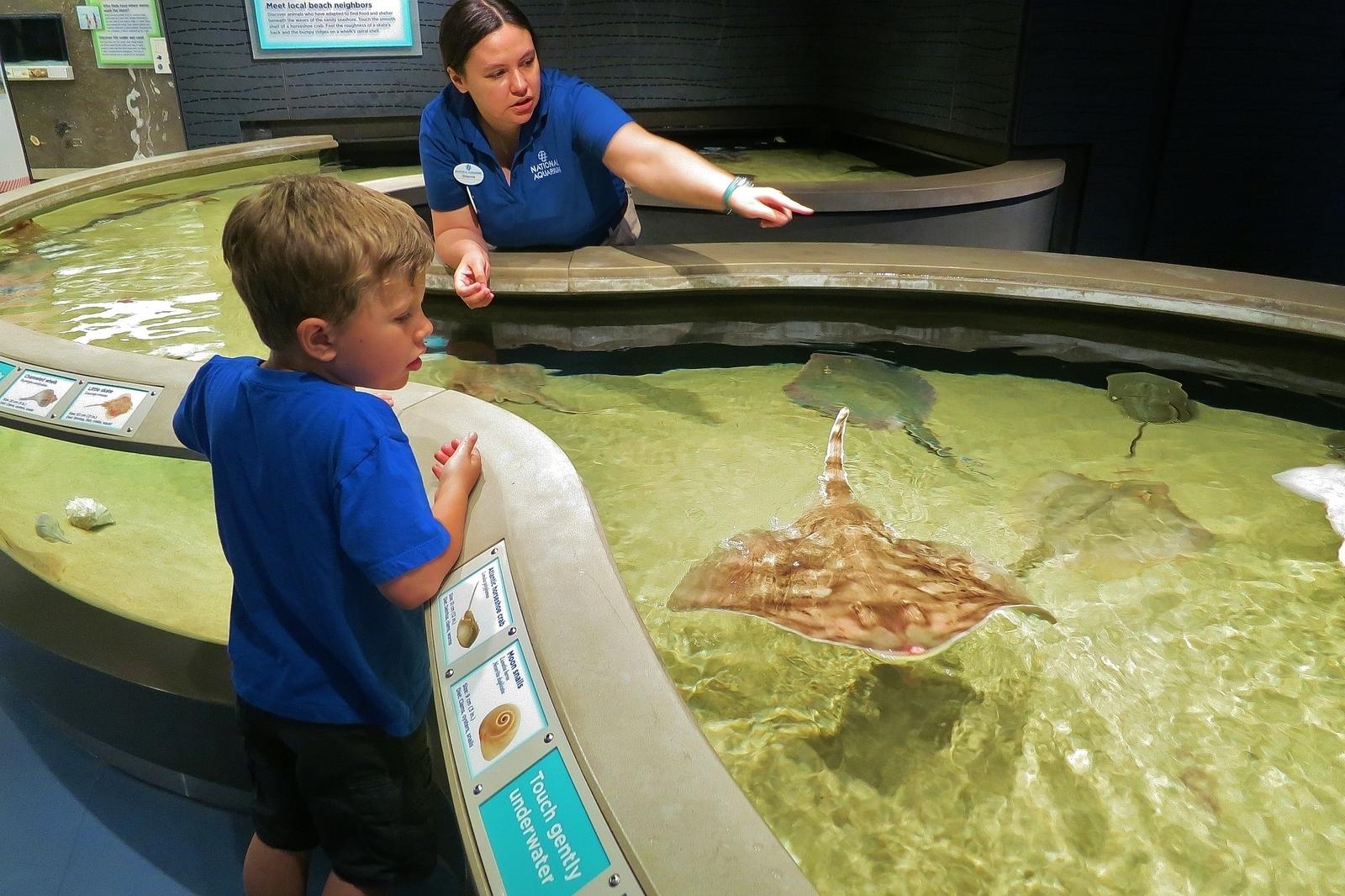 National Aquarium In Baltimore Baltimore Md Kid