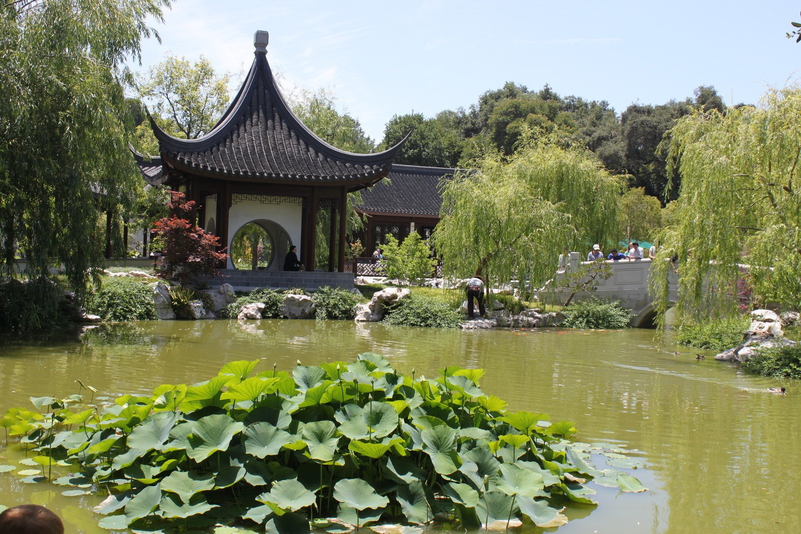 Huntington Library Art Collection And Botanical Gardens In San