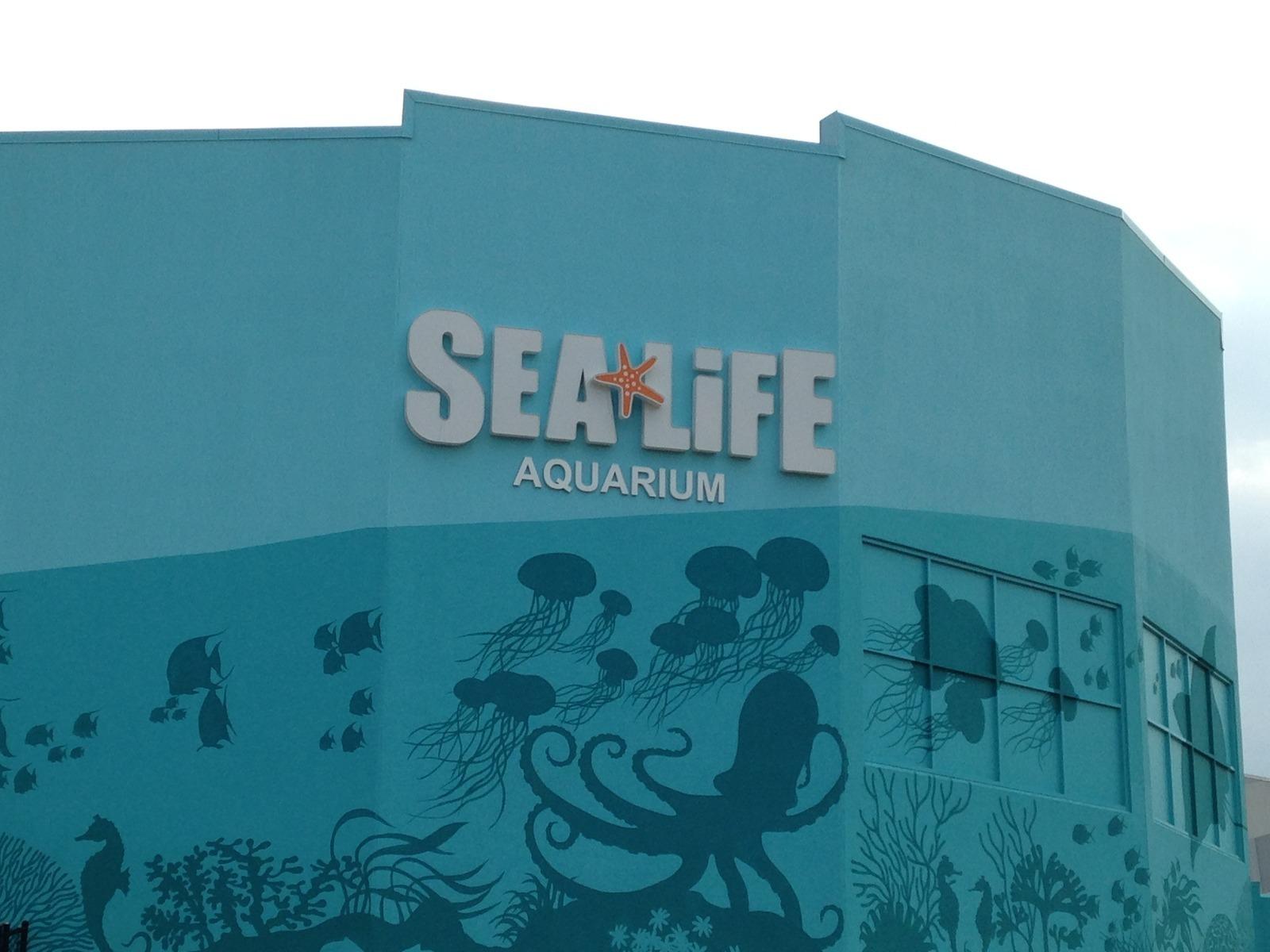 Sea Life Aquarium Charlotte Concord Concord Nc Kid