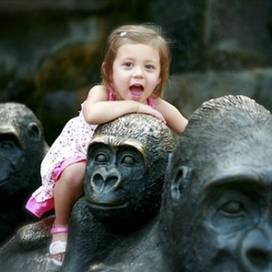 Unique-animal-encounters-trekaroo-digest-henry-doorly-zoo