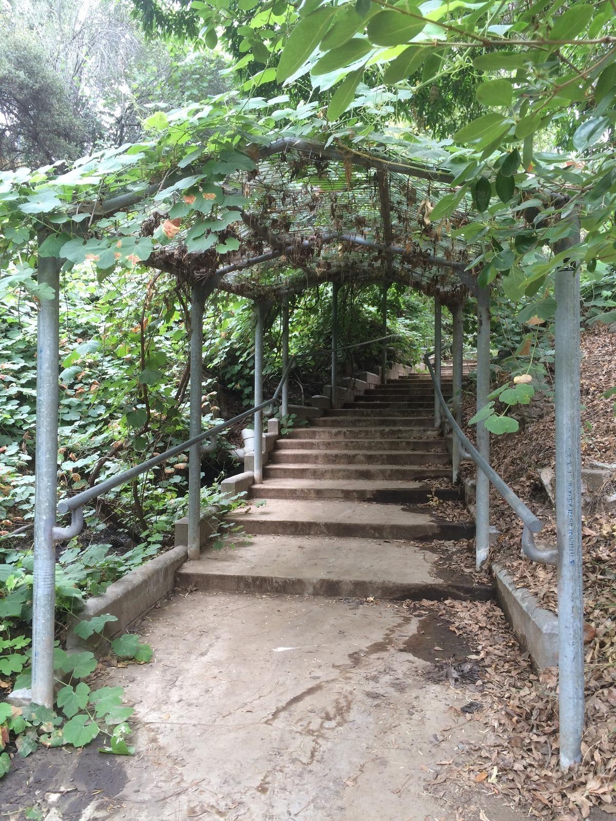 Botanic Gardens At University Of California Riverside Ucr River Trekaroo