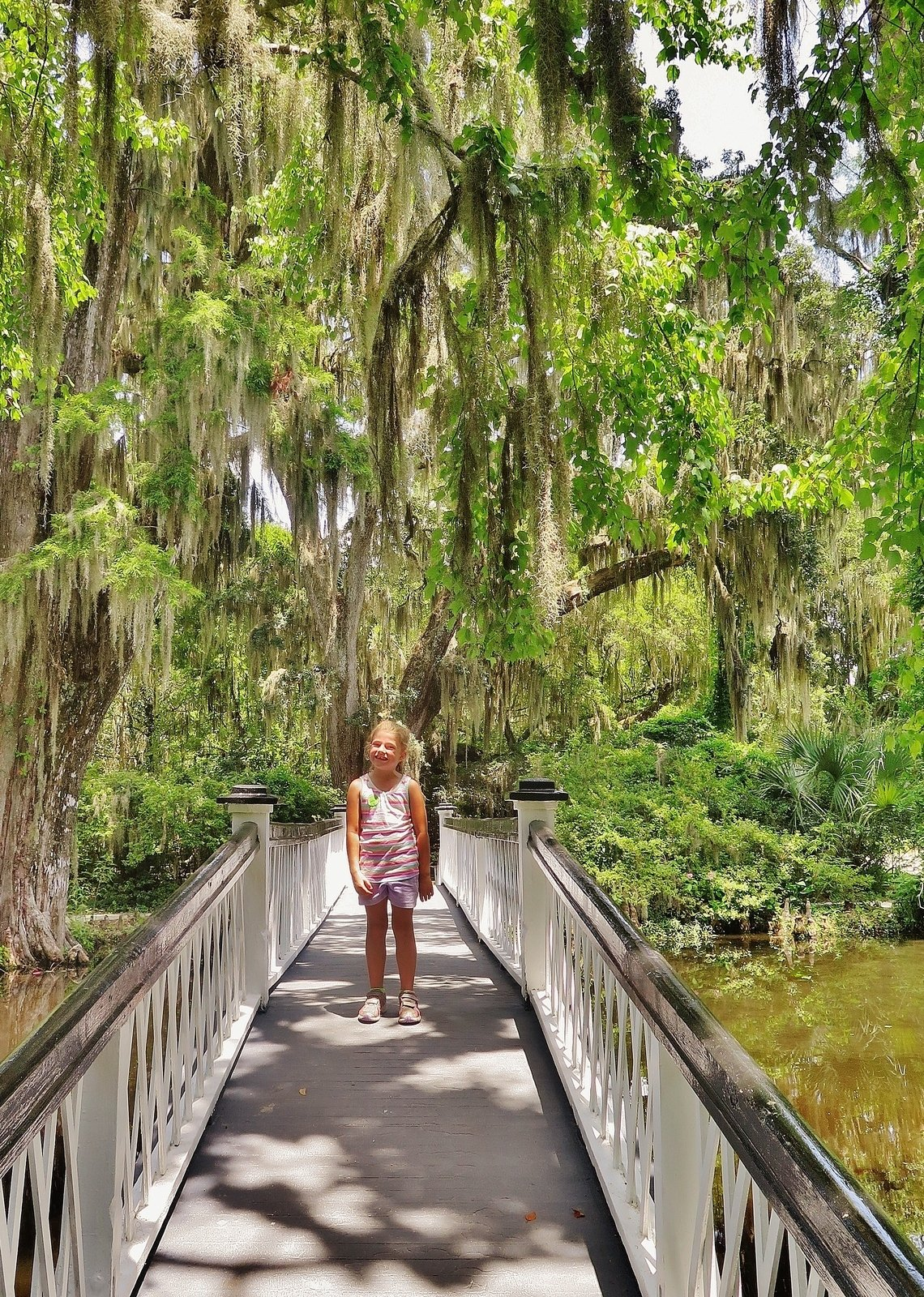 Magnolia Plantation And Gardens Charleston Sc Admission Information