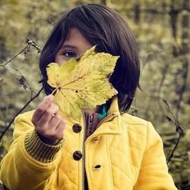 Fall-kids-autumn-leaves-trekaroo-digest