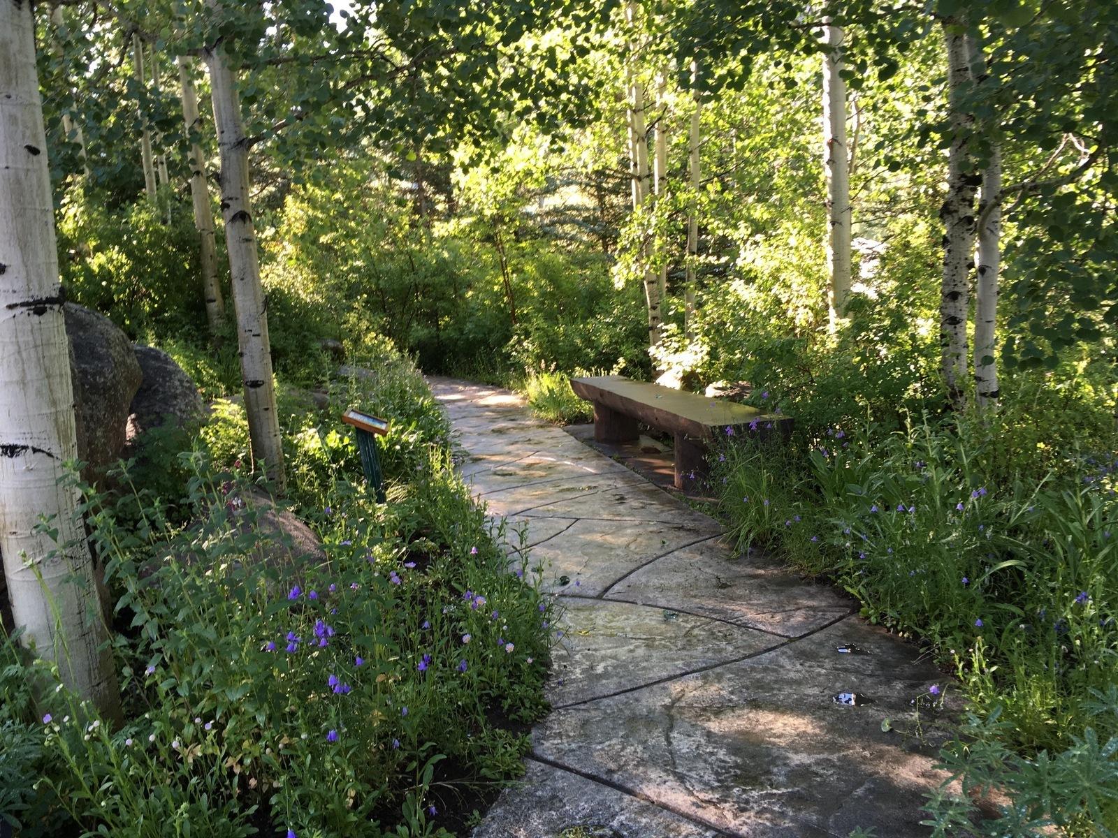 Betty Ford Alpine Garden In Vail Colorado Kid Friendly